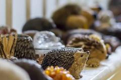 Pretty Maid House Bed & Breakfast Sevenoaks Kent hedgehogs